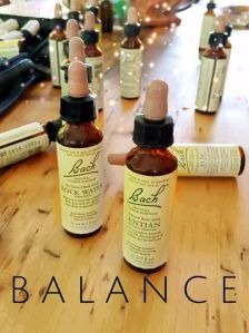 Bach Flower Remedy Bottles